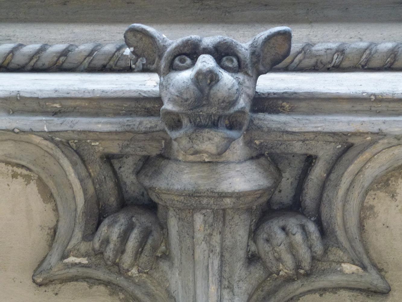 Główka psa z elewacji - Zamek w Zatorze